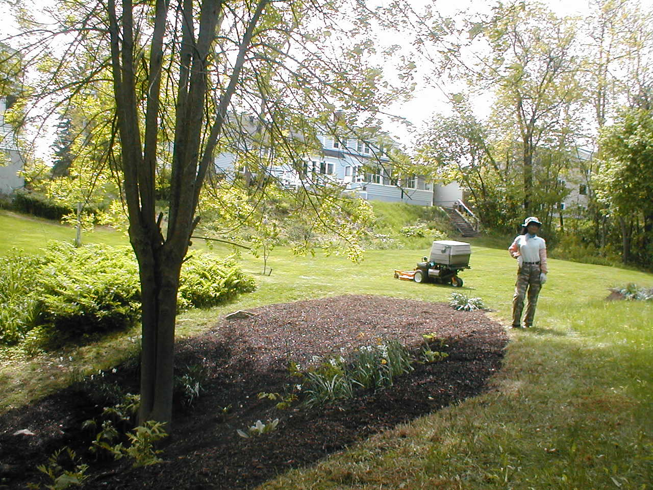 Bobo Show Off - Lawn Care - PCU Enterprises Southern Maine