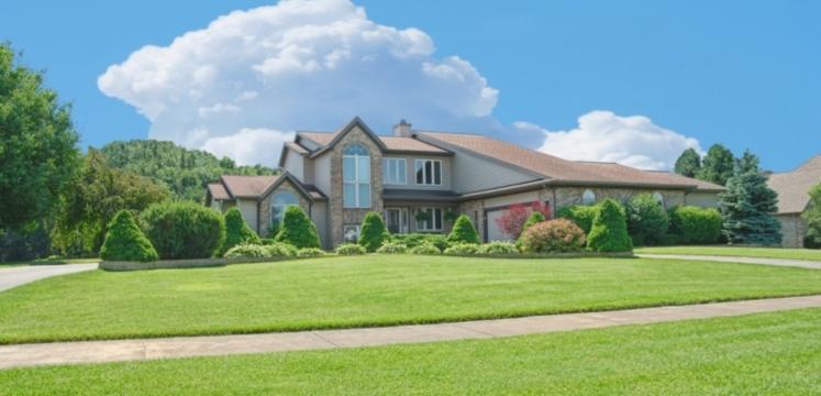 Lawn Care - Landscape Maintenance